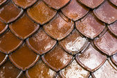 Thai style roof tile background — Stock Photo