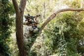 Soldier in uniform of the U.S. Army on the trees — Stock Photo