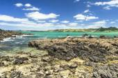 Beautiful sea landscape in New Zealand — Stock Photo