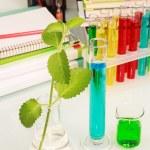 Colored chemistry liquid — Stock Photo #53158205