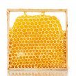 Sweet honeycombs with honey — Stok fotoğraf #53903777