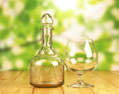 Glass bottle  and a glass — Stock Photo