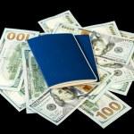 Dollar bills and passports — Stock Photo #61785913