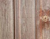 Wooden Panels — 图库照片