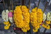 Floral garlands — Stockfoto