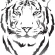 Tiger head — Stock Vector #60336255
