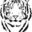Tiger head — Stock Vector #60336257