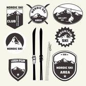 Ensemble d'éléments de conception ski nordique — Vecteur