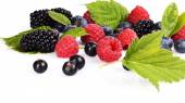 Assortment of various berries isolated white — Stock Photo