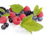 琳琅满目的各种浆果孤立白 — 图库照片