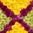 Colorful design pattern of flower texture and background — Stock Photo #64697249