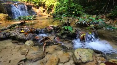 Waterfall in thai national park — Stock Video