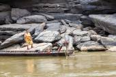 Local fisherman catch fish in khong river — Stock Photo