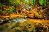 Wonderful waterfall with colorful tree — Stock Photo
