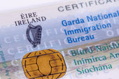 Irish Visa, GNIB — Foto Stock