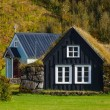 Traditional icelandic houses — Stock Photo #52131841