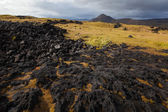 Iceland landscape with volcanic stones — Stock Photo