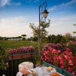 Dinner table in Italian restaurant — Stock Photo #52155267