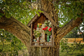Votive aedicula on a tree  — Stock Photo