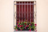 Iron grating window — Stock Photo