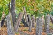 Старое еврейское кладбище в Праге — Стоковое фото