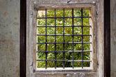 Window of Prague — Stock Photo