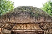 Marsh Plants Huts  — Stockfoto