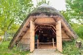 Marsh Plants Huts  — Stock Photo