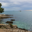 Croatian sea: Istrian coast — Stock Photo #61671909
