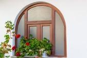 Okno a červená pelargonie — Stock fotografie