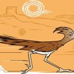 Desert Roadrunner — Stock Vector #72603153
