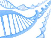 Long structure of the DNA — Stock Photo