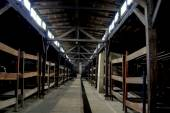 Auschwitz, Poland: Dormitory Bunk Beds at Concentration Camp — Stock Photo