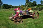 Goshen, ct: Bauernhoflastwagen mit Herbst Blumen — Stockfoto