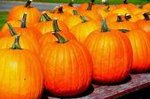 Spencertown, NY: Pumpkins at Roadside Farmstand — Stock Photo
