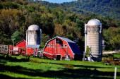 West Arlington, VT: Nolan Farm — Stock Photo