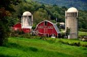 West Arlington, VT:  Barn with Two Silos — Stock Photo