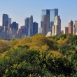 NYC: View of Manhattan Skyline from Central Park — Foto de Stock   #56501569
