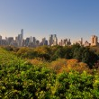 NYC: View of midtown Manhattan Skyline from Central Park — Photo #56501573