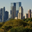 NYC: View of Manhattan Skyline from Central Park — Foto de Stock   #56501601