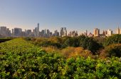 NYC: View of midtown Manhattan Skyline from Central Park — Stockfoto