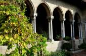 NYC: Bonnefont Cloister at the Cloisters Museum — Stock Photo