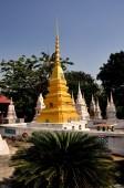 Ayutthaya, Thaïlande : Chedi et des tombeaux funéraires au Temple de Thai — Photo