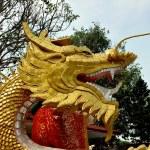 Bang Saen, Thailand: Gilded Dragon at Chinese Temple — Stock Photo #72469539