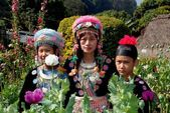 Doi Poi, Thailand: Thai Family in Traditional Clothing — Stock Photo
