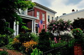 Baltimore, MD: Federal Hill 18th century Homes and Garden — Stock Photo