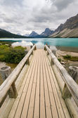 Wooden bridge on Bow Lake — Stockfoto