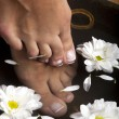 Foot Spa — Stock Photo #54188815
