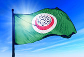 Organisation of Islamic Cooperation flag waving on the wind — Foto de Stock