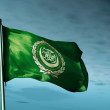 Arab League flag waving on the wind — Stock Photo #52490559